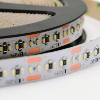 1808 300 LEDs Flexible Strip 24V