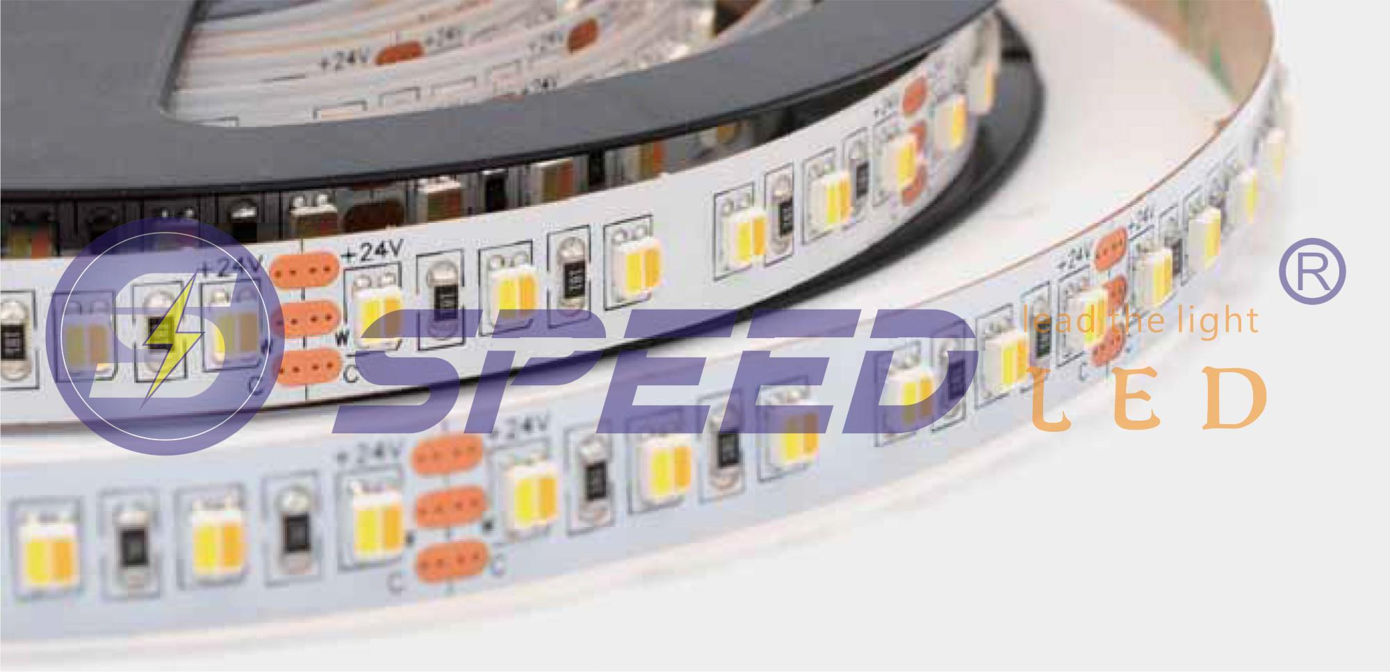 3528 2-in-1 120LEDs  WW-CW Flexible Strip 24V